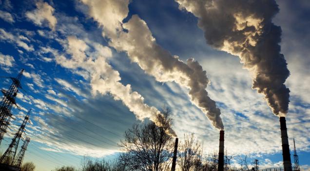Returne to the roots: To Καταναλωτικό Κίνημα μπροστά στην Κλιματική Αλλαγή